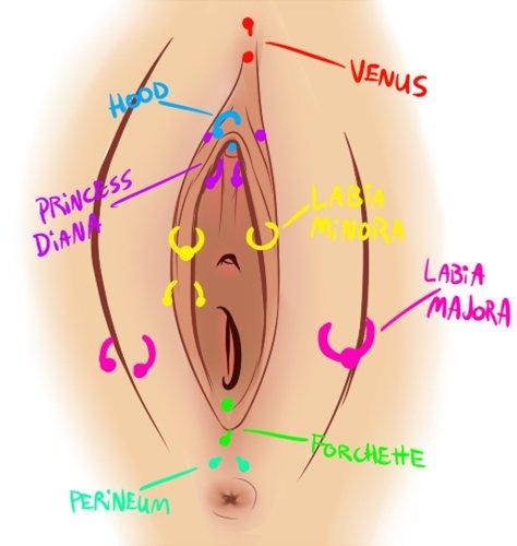 vagina piercings